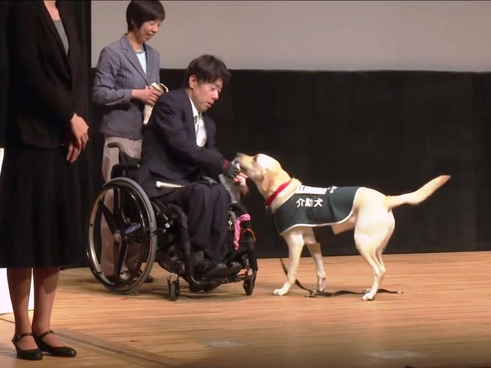 写真:「2015憲法と市民のつどい」壇上にて、理事・木村佳友&介助犬デイジー