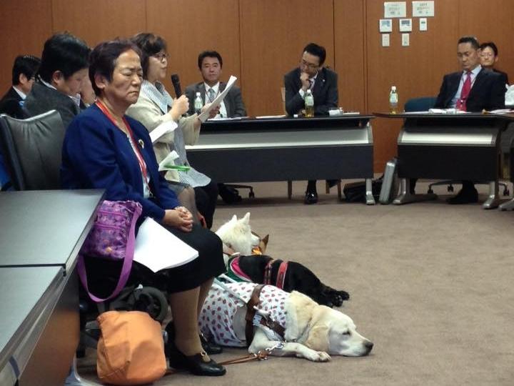 写真:会議の様子